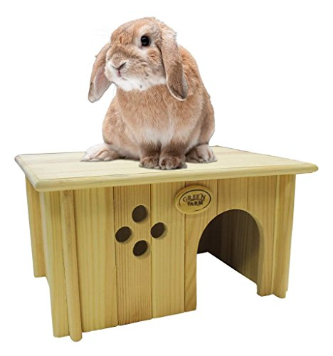 Rabbit-House-2