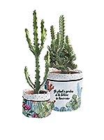 Surdic Macetero Cover Cactus Garden