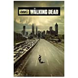 The Walking Dead Season 1 Television Poster