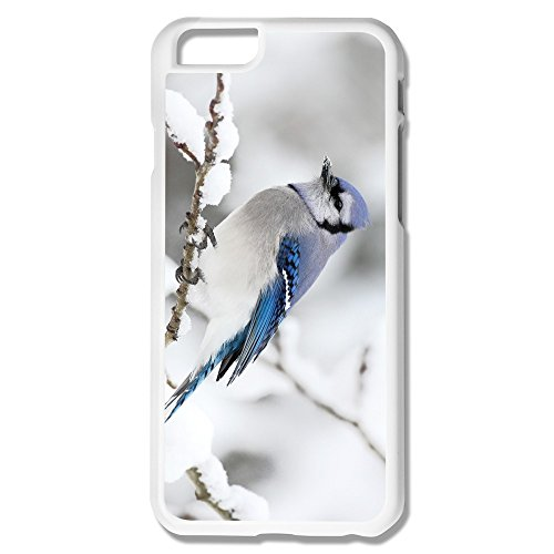 Bird Iceland Fantastic Pc Cases For Iphone 6