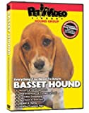Basset Hound DVD - Everything You Should Know About Your Dog