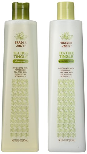 trader-joes-tea-tree-tingle-shampoo-conditioner-16-oz