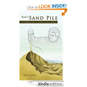 Bak's Sand Pile: Strategies for a Catastrophic World