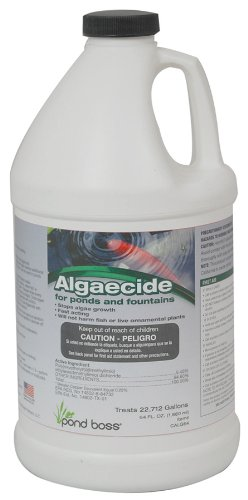 geo-global-partners-llc-calg64-64-oz-algaecide