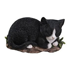 Vivid Arts Sleeping Cat Plaque - Black and White by Vivid Arts Ltd