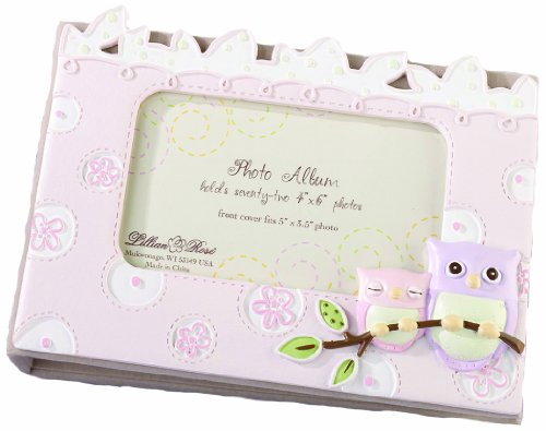 "Lillian Rose Photo Album with Photo Frame On Cover, Pink Owl, 4.75"" x 7"""