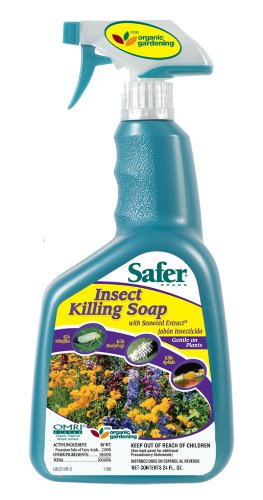 Safer Brand 5112 Insect Killing Soap Ready-to-Use 24-Ounces