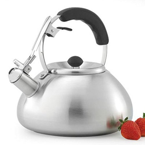 Creative Home Savanah Tea Kettle With Brushed Finish, 3.0-Quart