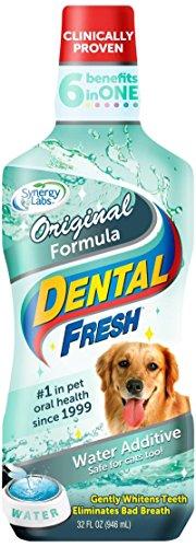 Dental Fresh Original Formula Dog - 32 oz