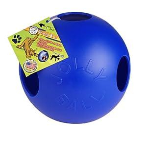 Pet Supplies : Pet Toy Balls : Jolly Pets 10-Inch Teaser