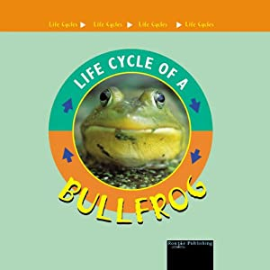 Life Cycles: Bullfrog | [Jason Cooper]