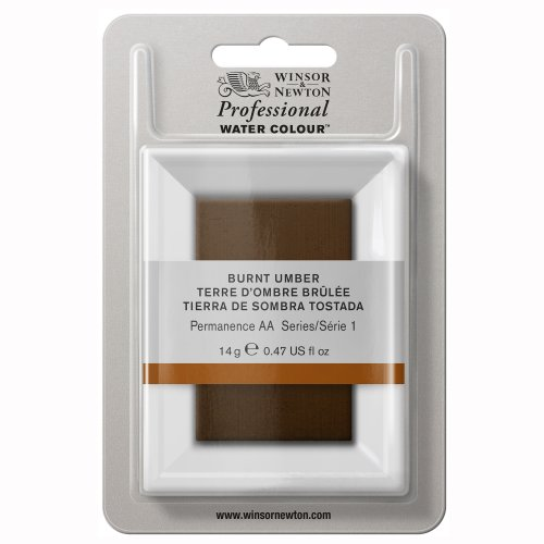 winsor-newton-professional-water-color-tube-with-large-pan-burnt-umber