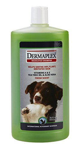 Artikelbild: International Veterinary DBP01062 DermaPlex Medizinisches Shampoo
