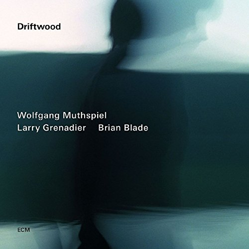 Muthspiel, Wolfgang/Grenadier, Larry/Blade, Brian Driftwood Other Modern Jazz (Wolfgang Muthspiel Driftwood compare prices)