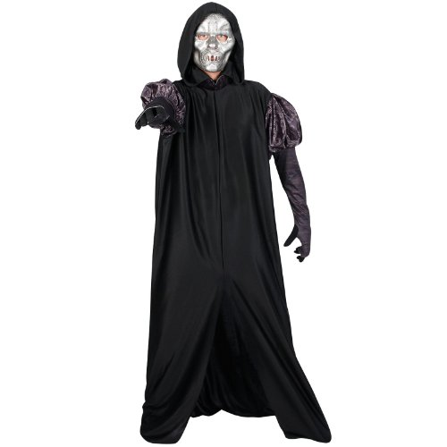 Harry Potter's Death Eaters Costume