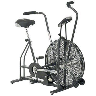 Airdyne bike online the schwinn airdyne upright exercise bike provides you the variability of resistance that you need for an intense satisfying workout that is great for both fandeluxe Images