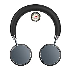 Rock Headphones Headset with Mic, Extremely Soft Ear Pad, Metal body Tarnish