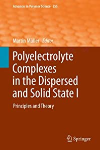 Polyelectrolyte Complexes in the Dispersed and Solid State I [electronic resource] : Principles and Theory