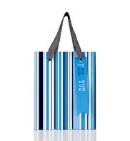 Multiple Blue Striped Small Bag