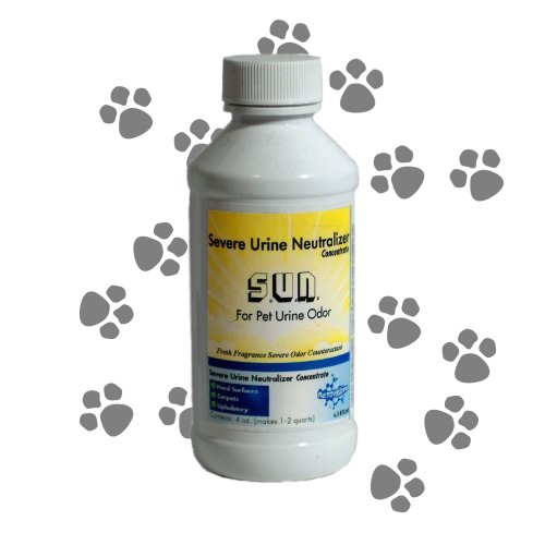 stop cat spraying without neutering cats