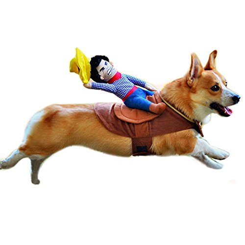 Alfie Pet Apparel by Petoga Couture - Tony the Cowboy for Party Halloween Special Events Costume - Size: M