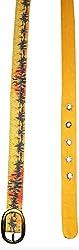 Jajv Women's Canvas Belts (VJ Paint, Yellow, M)