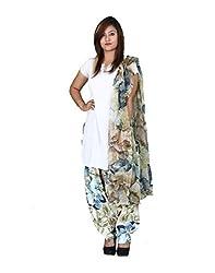 Chhipaprints Women's Cotton Salwar Suit Dress Material (WomenSalwarDupattaSet1034 _Multi-Coloured)