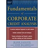 img - for [(Standard & Poor's Fundamentals of Corporate Credit Analysis)] [Author: Blaise Ganguin] published on (December, 2004) book / textbook / text book