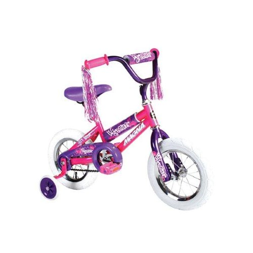 Dynacraft Girl's Magna Lil Dreamer Bike (Pink/Purple, 12-Inch)