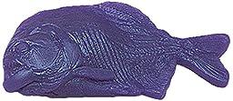 Nasco 9719197 Life/form Fish Replica, Piranha, 8\