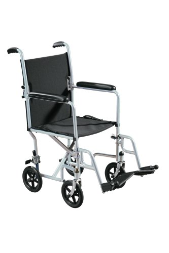 Drive Medical Transport Chair Economy 19 Inch Silver Vein, 1 ea