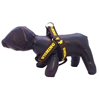 Buy NCAA Wyoming Cowboys Dog Harness, Medium by All Star Dogs