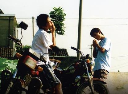 Betelnut (Bing Lang) (Institutional Use)