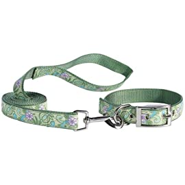 East Side Collection Pretty Paisley Dog / Cat Lead and Collar