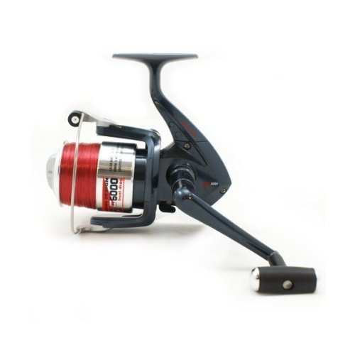 Beach casting fishing reel - DG6000 Surf Sea Reel With Ali Spool