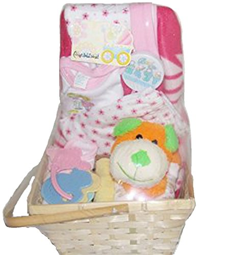 Baby Gift Basket Pink Set w/ Dog, Rattles, Wash Cloths, Baby Blanket, and Set of Clothes - 1