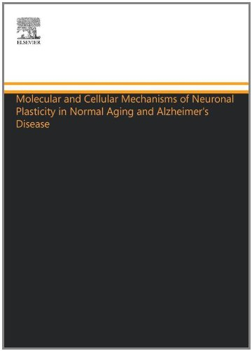 Molecular And Cellular Mechanisms Of Neuronal Plasticity In Normal Aging And Alzheimer'S Disease