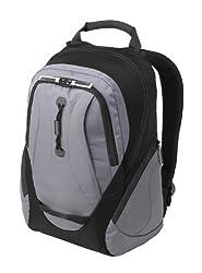 Case Logic Clnb-15 15.4-Inch Sport Laptop Backpack (Black/Gray)