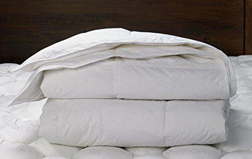 w-hotels-king-down-duvet-comforter