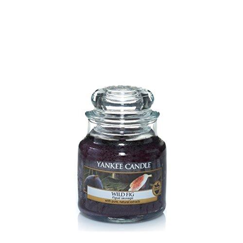 Yankee-Candle-Classic-Housewarmer-Klein-Wild-Fig-Duftkerze-Raum-Duft-im-Glas-Jar-1315002E
