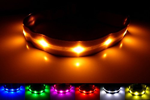 LED-Dog-Safety-Collar-Improved-Dog-Visibility-Safety-Super-Bright-LED-Glow-Flash-Great-Fun-Improved-Dog-Visibility-Safety-Orange-M