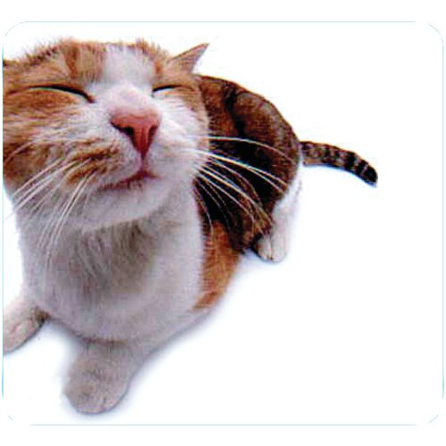 1 – Pet-Me Cat Mouse Pad, Cloth surface, Excellent for all mouse types, 29370