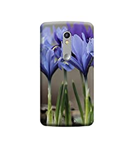 EPICCASE Premium Printed Mobile Back Case Cover With Full protection For Motorola Moto X Force (Designer Case)