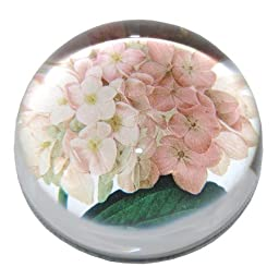 Summer Hydrangeas - Crystal Dome Paperweight