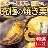 笠間の焼き栗 あいきマロン 「愛宕山 / 特選 L~2Lサイズ 1箱(400g×2袋)」