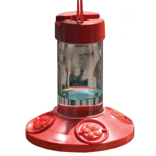 Songbird Essentials Se6002 Dr Jb'S Clean Feeder, Red, 16-Ounce