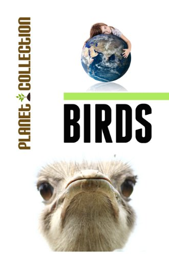 Birds: Picture Book (Educational Children's Books Collection) (Planet Collection)