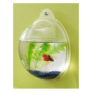 Set A Shopping Price Drop Alert For Wall Mount Fish Bowl Aquarium Tank Beta Goldfish