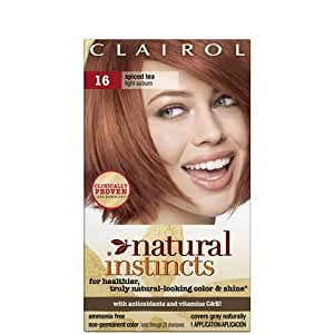 clairol natural instincts 016 spiced tea