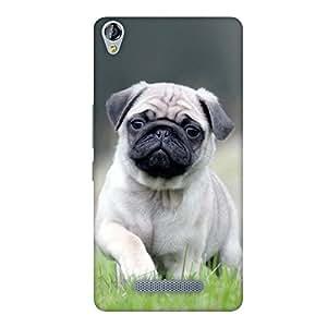 FASHEEN Premium Designer Soft Case Back Cover for Micromax Canvas Juice 3 Plus Q394